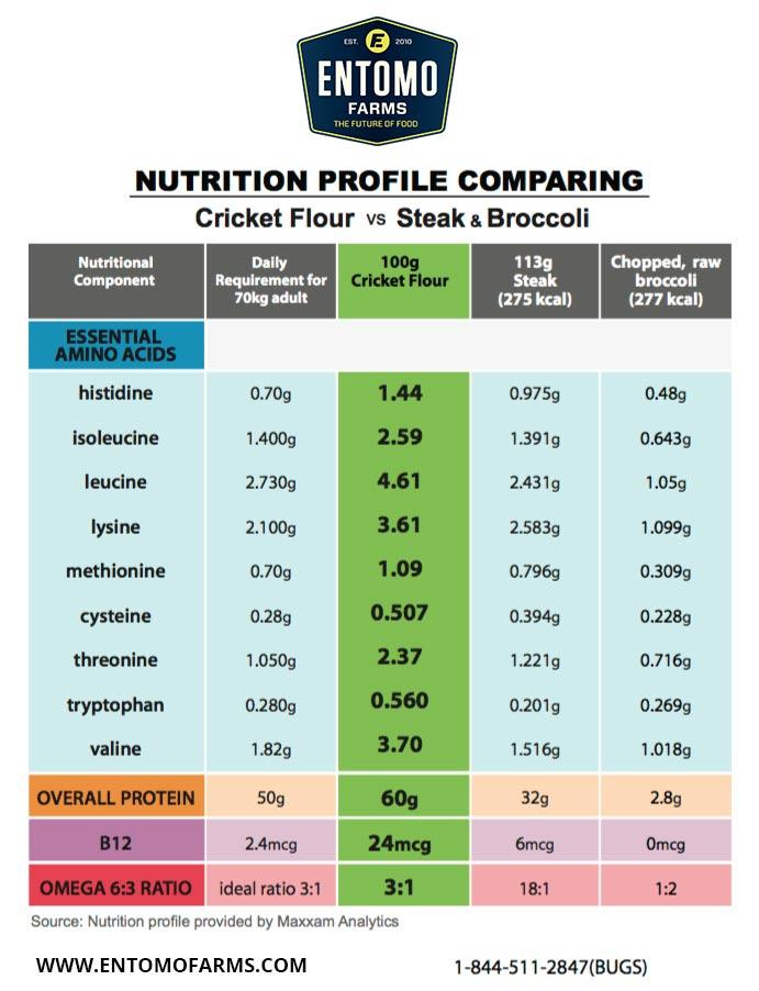 Cricket Powder   Cricket Flour   Cricket Protein Powder   EdibleInsects com