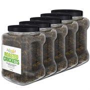 Bulk Edible Crickets For Sale Online