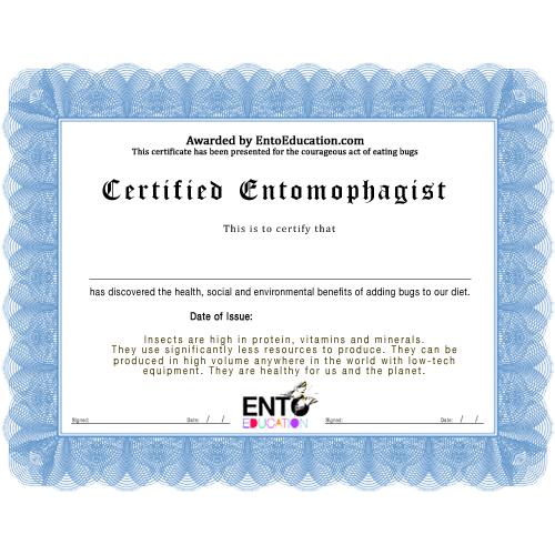 Insect Bug Certificate