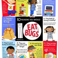 Edible Insect Educational Poster