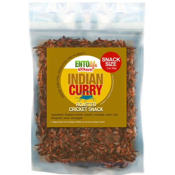 Indian Curry Flavored Crickets Raised for Human Consumption