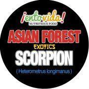 Edible Scorpion II