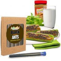 Edible Ants