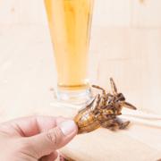 Water Bug Edible