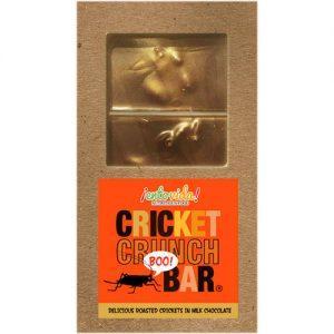 Cricket Crunch Bar - Milk