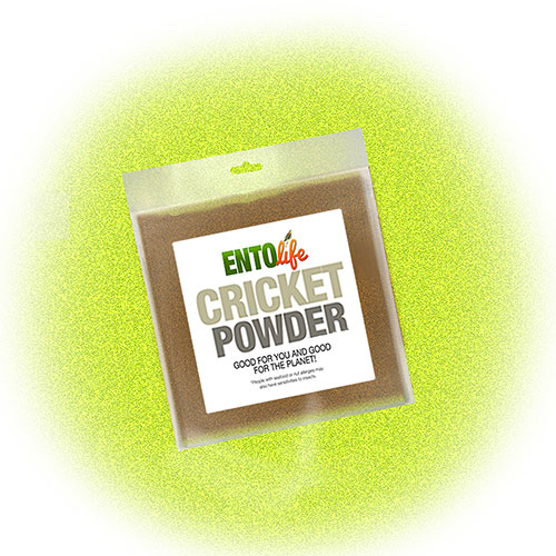 Cricket Powder Samples