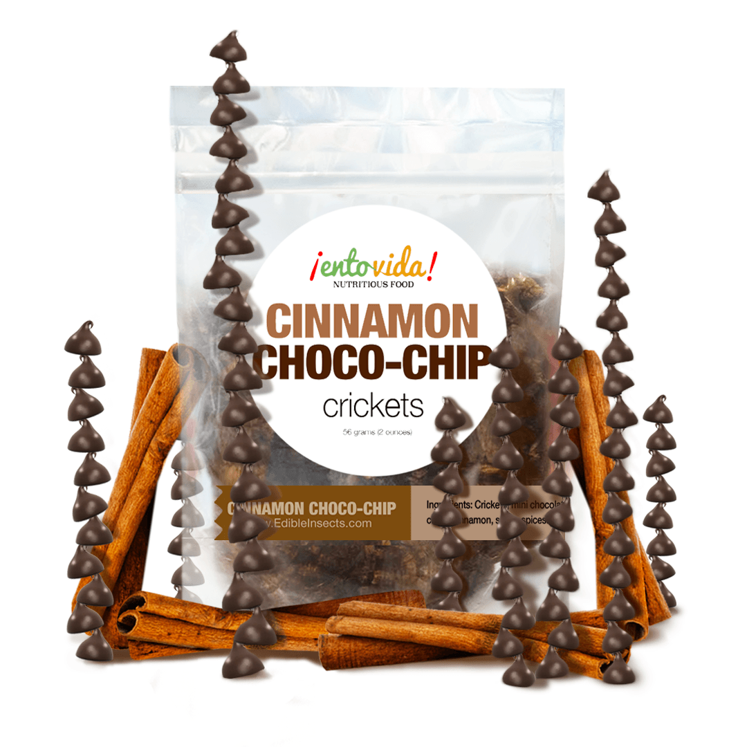 Cinnamon Choco-Chip Seasoned Roasted Crickets