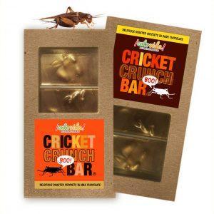 Cricket Crunch Bar Duo