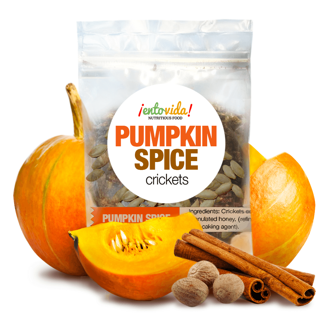 Pumpkin Spice Seasoned Roasted Crickets Edible Insects