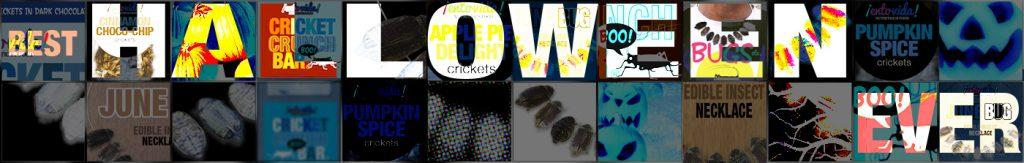 Halloween Edible Insects