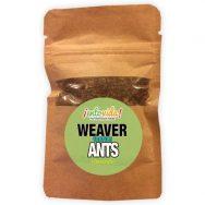 Edible Weaver Ants