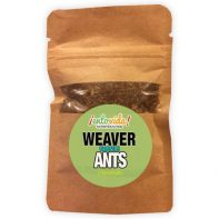 Edible Weaver Ants