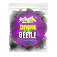 Diving-Beetle