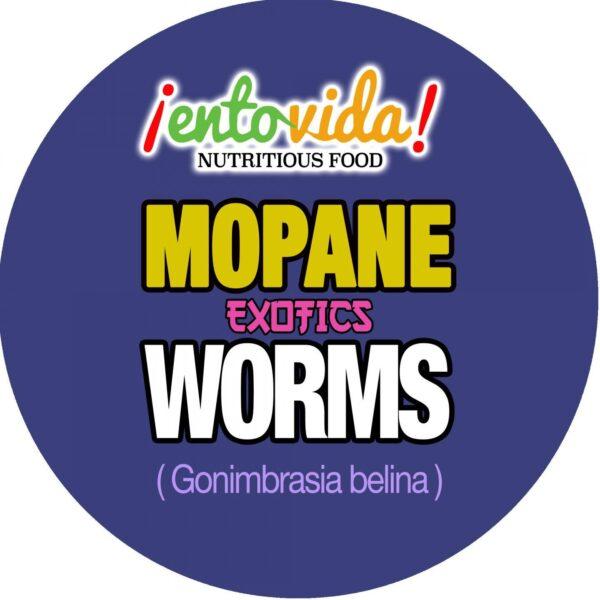 Mopane Worm Label
