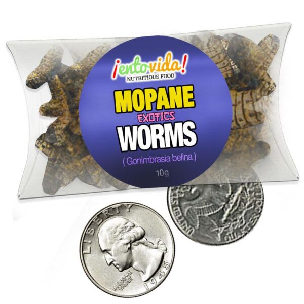 Sample Size Mopane Worms