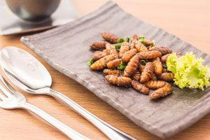 Expensive Edible Insects