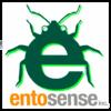 Entomophagist