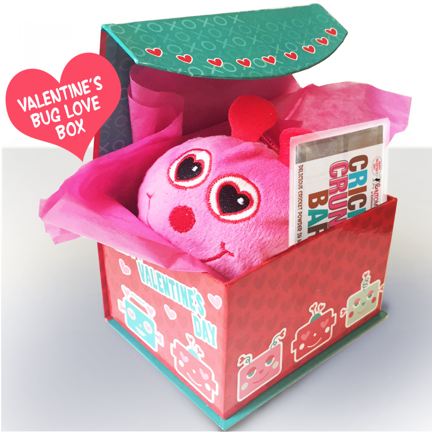 Valentines Bug Box