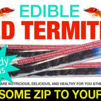 Edible Red Termites