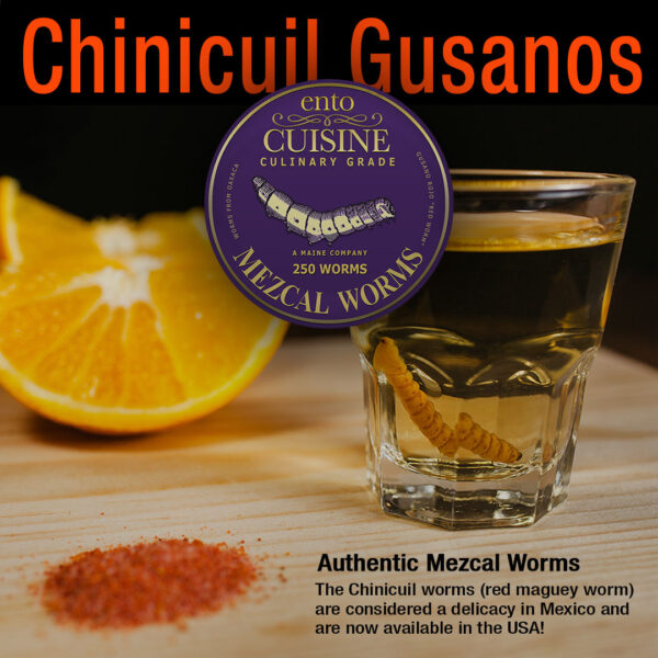 Chinicuil Gusanos For Sale