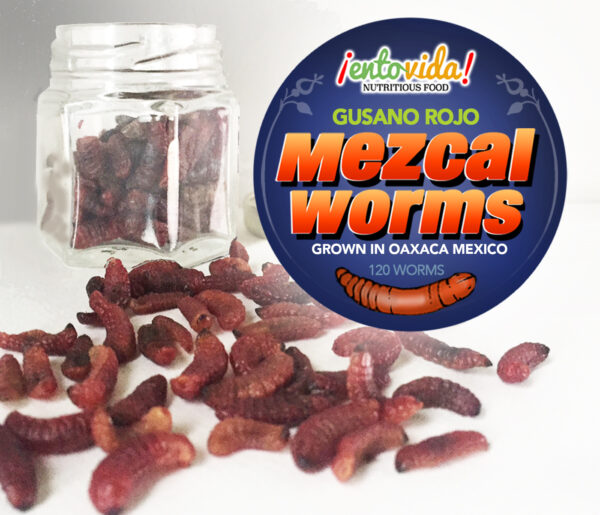 Maguey Worms