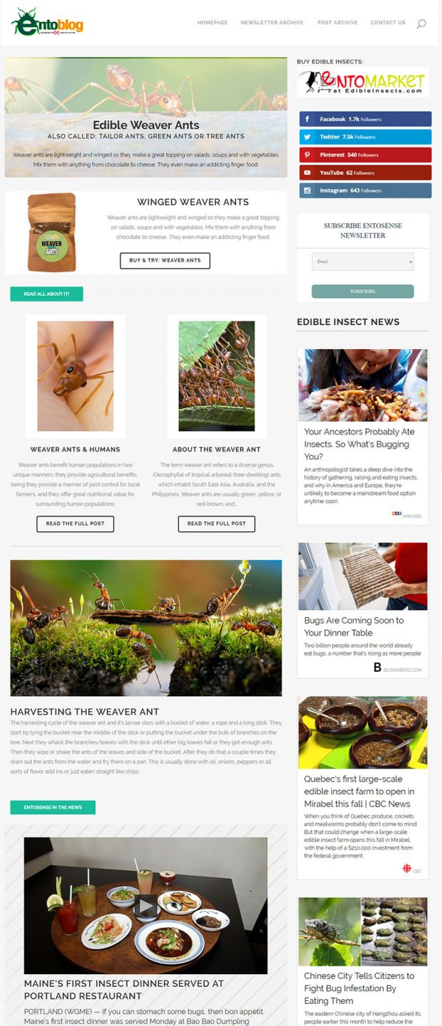 Edible Weaver Ants Newsletter