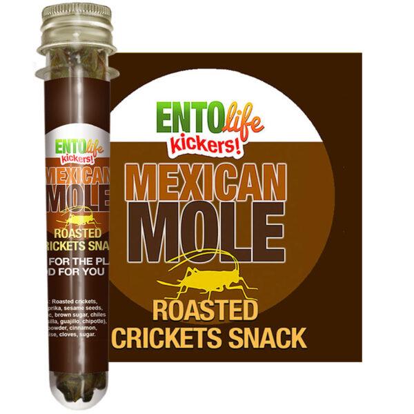 Mexican Mole Edible Crickets for Human Consumption
