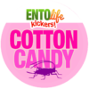 Cotton Candy Crickets for Human Consumption