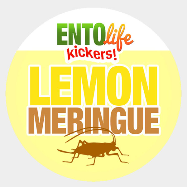 Lemon Meringue Crickets for Human Consumption