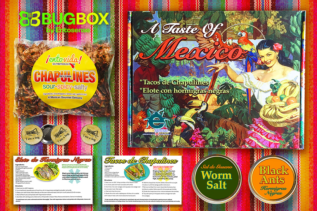 Mexican Edible Insects Gift Subscription Box