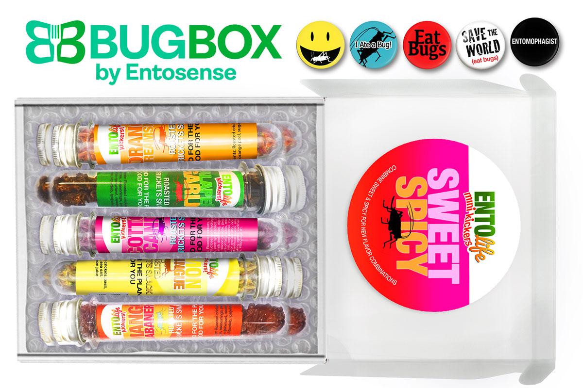 Edible Crickets Gift Subscription Box