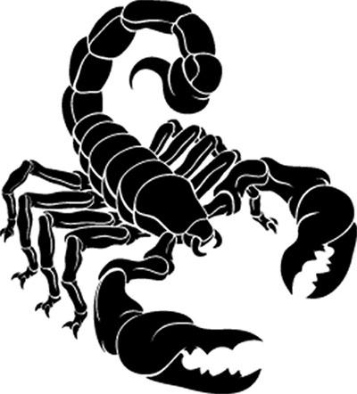 Scorpion Exoskeleton