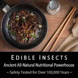 Insect Safety