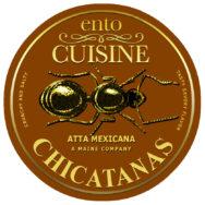 Chicatanas from Mexico